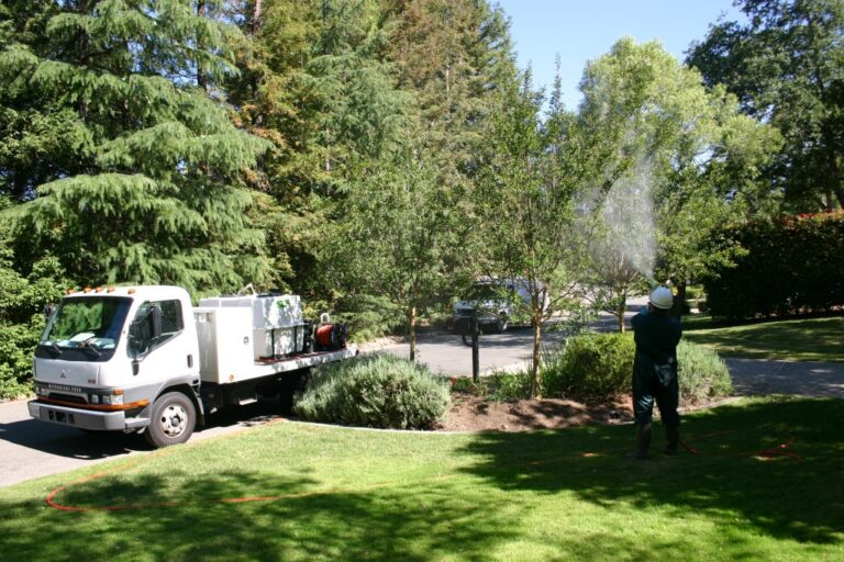 Tree Fertilization with Crew Spraying